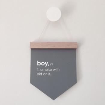 Boy Wall Flag